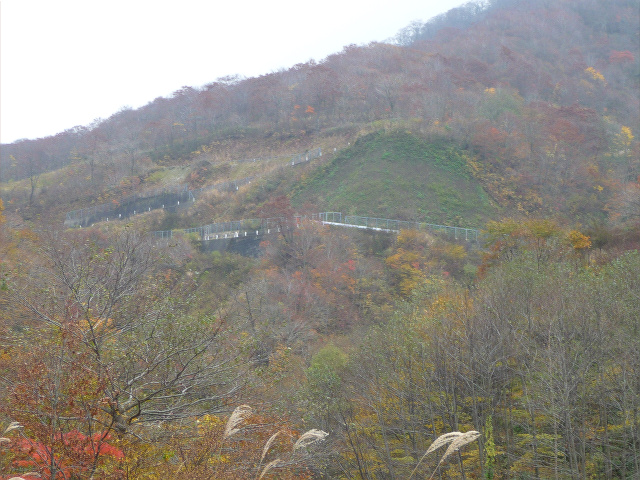 20111105-R157-2.jpg