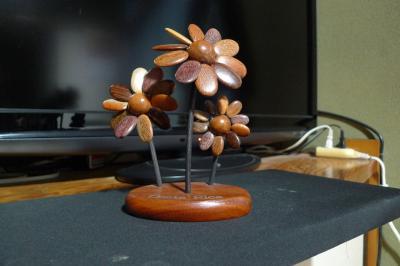 コスタリカの花