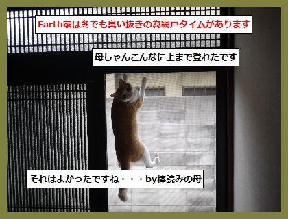 ふゆ1 (1)