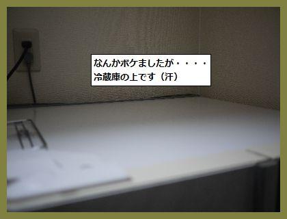 掃除5 (1)