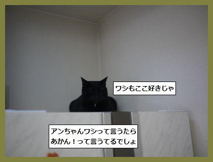 掃除5 (2)