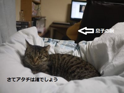 まりちゃん1