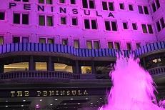ピンク噴水