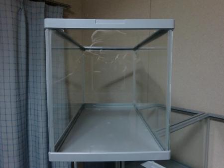 湧き水水槽11