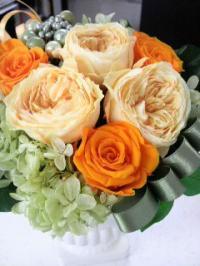 flower+1+(2)_convert_20120405144826.jpg