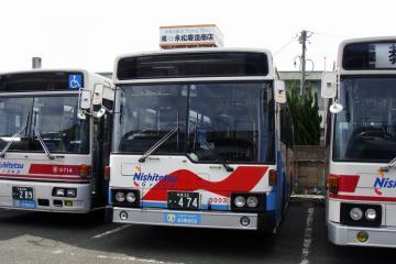 DSC01269-1.jpg