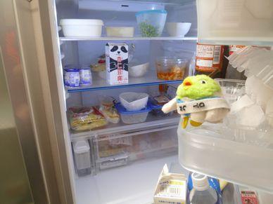 家庭でできる節電④冷蔵庫2
