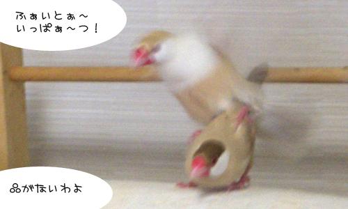 休日の朝_7
