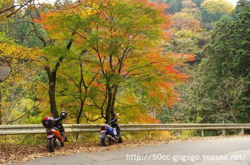 O-yama05.jpg