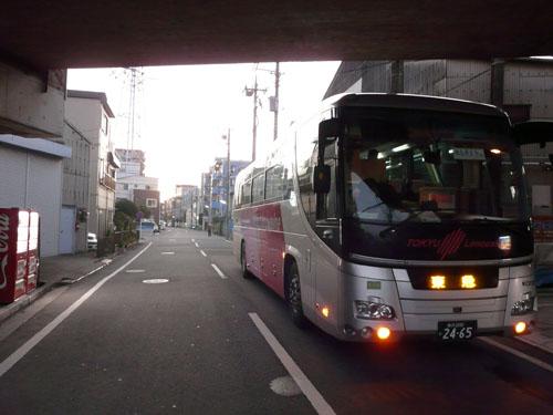 P1190857.jpg