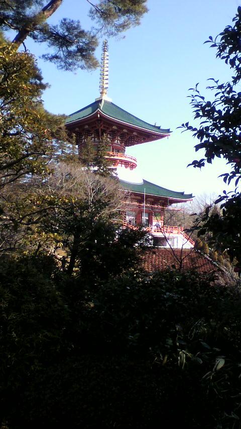 成田山 平和大塔遠景