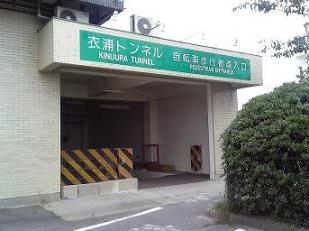 kinu-t4.jpg