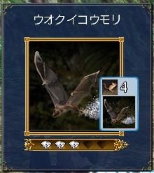 ウオクイコウモリ