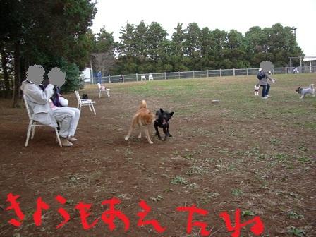 2010_1113_144757-IMGP12731.jpg