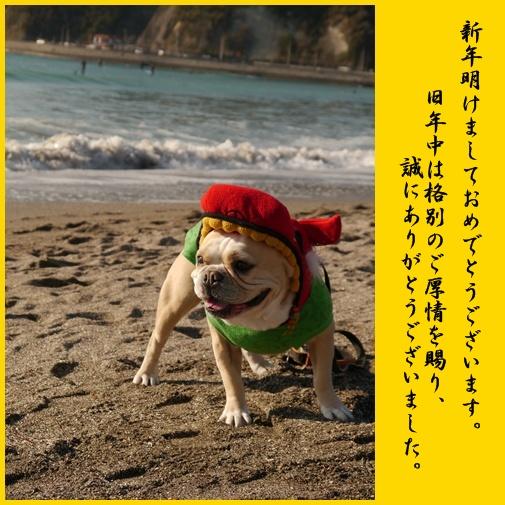 page_201401042101075f6.jpg