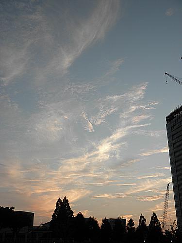 20100903秋の空