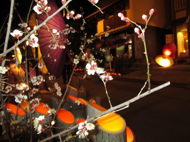 九日町の傘明かり (2)