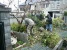 墓地の清掃
