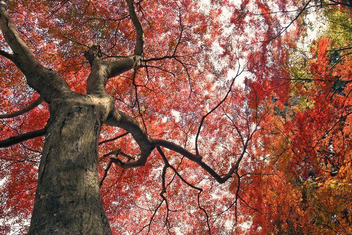 11-11-11-1.jpg