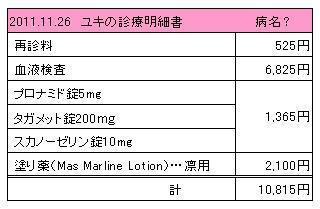 ユキ 2011.11.26診療明細書