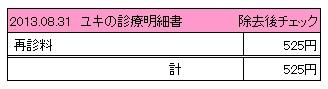 2013.08.31診療明細書【ユキ】
