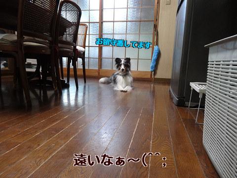 遠いなぁ~(^^;