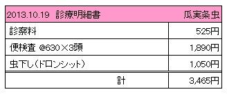 2013.10.19診療明細書【ユキ】