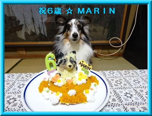 祝6歳☆MARIN
