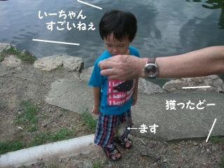 ます釣り8
