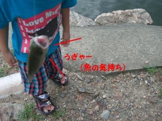 ます釣り9