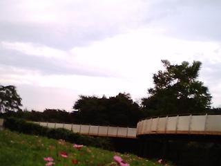 蒼ちゃんの写真3