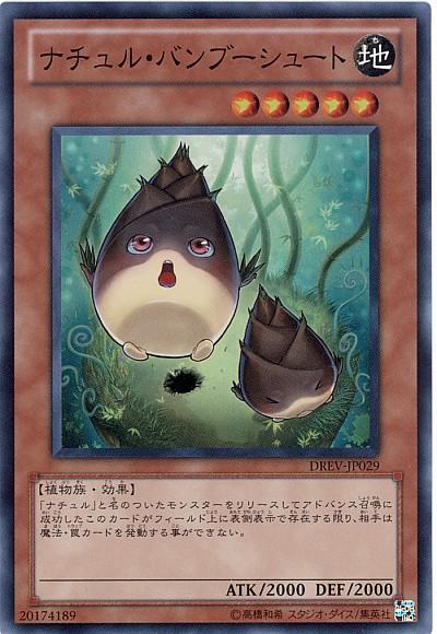 card73709114_1.jpg