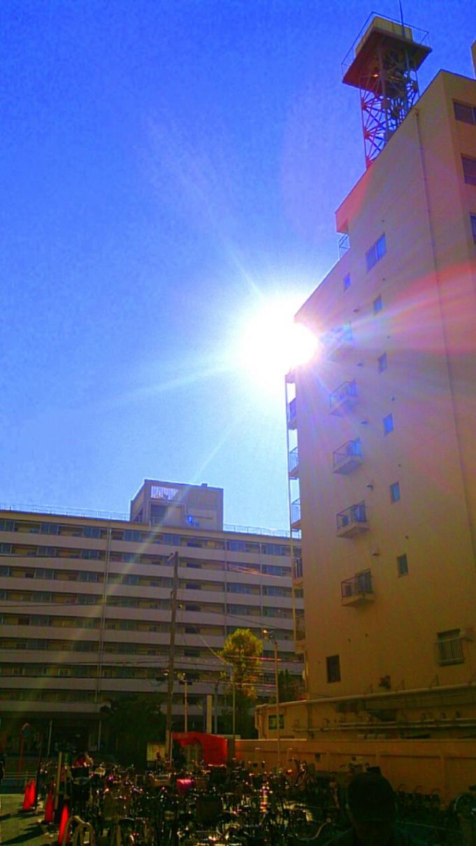 太陽_20131203