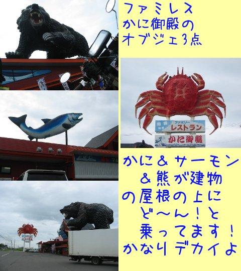 2013073167.jpg
