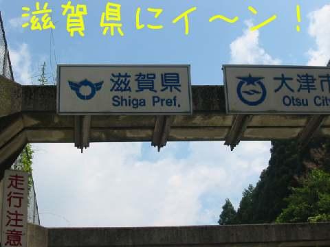IMG_3331.jpg