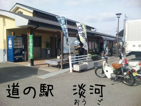 SH380093.jpg