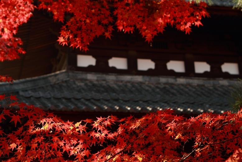東福寺、8