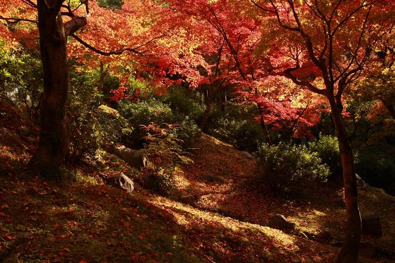 東福寺、10