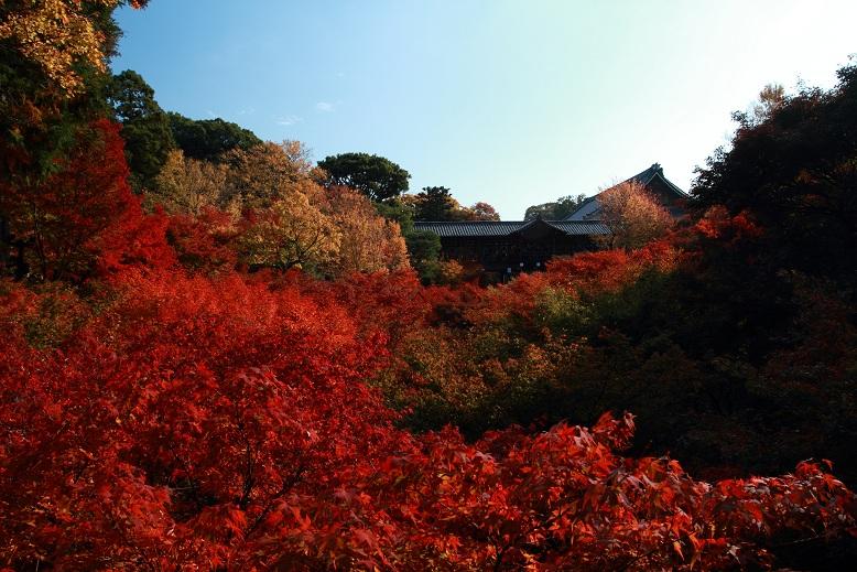 東福寺、11