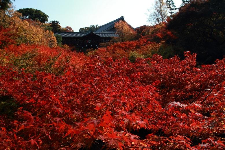 東福寺、12