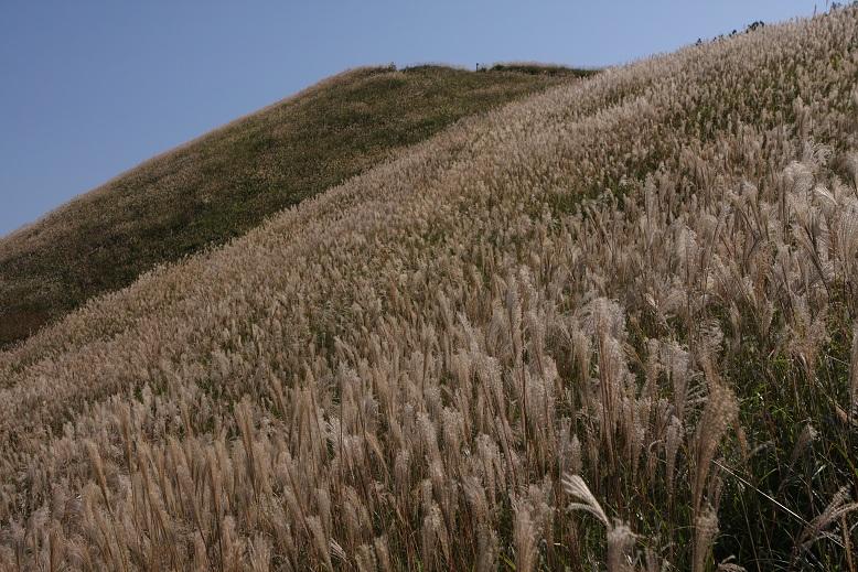 岩湧山、6