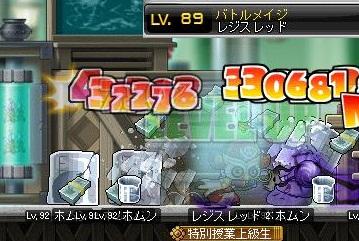 Maple110329_143811.jpg