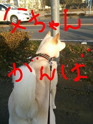rakugaki_20130212_0002.jpg