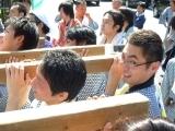 高田馬場まで通う係長の記-高田 氷川神社祭礼-3