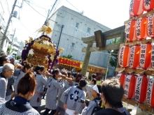 $高田馬場まで通う係長の記-高田 氷川神社祭礼-4