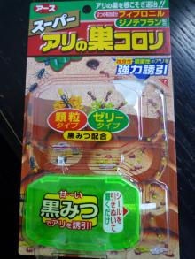 $原宿と渋谷の間に間に-アリの巣コロリ-1