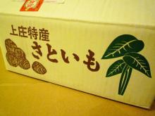 $原宿と渋谷の間に間に-上庄里芋-1