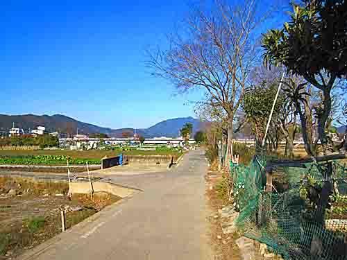 uomichi.jpg