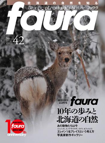 faura42表紙