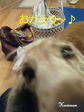 ブログ 1.25 ⑤ IMG_9412